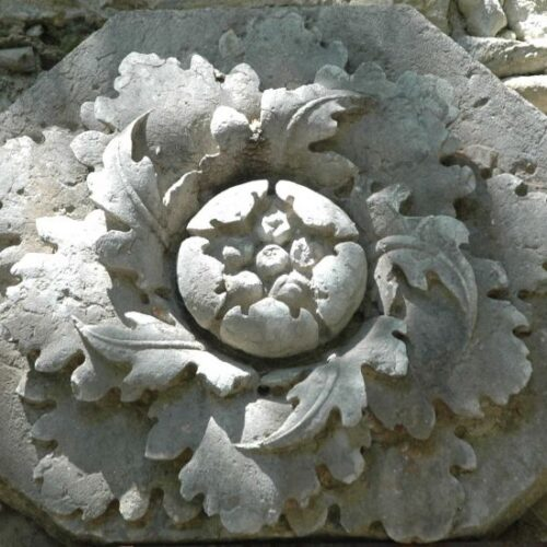 Rosacruzygnosis