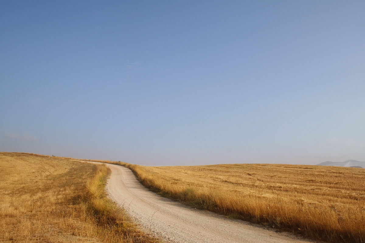 """Ciclo """"La Meta es el Camino"""": La Necesidad del Asombro"""